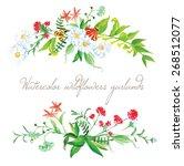watercolor summer wildflowers... | Shutterstock .eps vector #268512077