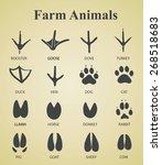 Set Of Farm Animal Tracks
