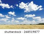 White Color Cumulus On Aero...