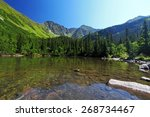 slovakia mountain lake  ... | Shutterstock . vector #268734467