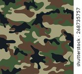 camouflage seamless pattern. | Shutterstock .eps vector #268735757