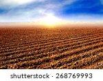 tilled soil after harvest and... | Shutterstock . vector #268769993