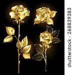 set of gold  shining roses on a ...