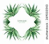 herbal vector watercolor circle ... | Shutterstock .eps vector #269033543