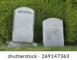 Small photo of Two tombstones in front of a hedge