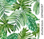 exotic leaves  rainforest.... | Shutterstock .eps vector #269460287