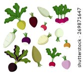 set of radish  beet and turnip... | Shutterstock .eps vector #269871647