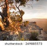 stunning australian bush...   Shutterstock . vector #269885573