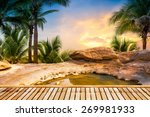 open air hot spring spa on... | Shutterstock . vector #269981933