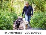 man exercising dogs on...   Shutterstock . vector #270164993