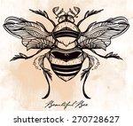 Beautiful Hand Drawn Honey Bee...