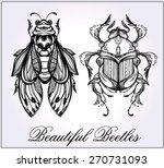 beautiful hand drawn antique... | Shutterstock .eps vector #270731093