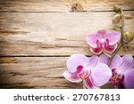 orchid flower on the wooden... | Shutterstock . vector #270767813