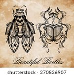 beautiful hand drawn antique... | Shutterstock .eps vector #270826907