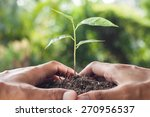 hands holding and caring a... | Shutterstock . vector #270956537