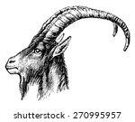 ibex head  vintage engraved... | Shutterstock .eps vector #270995957