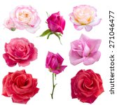 Collage Of Eight  Roses...
