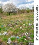 landfill and tree | Shutterstock . vector #271206857