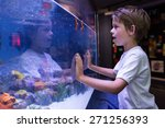young man touching a starfish... | Shutterstock . vector #271256393