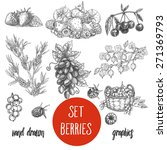 sketches and engravings berries ... | Shutterstock .eps vector #271369793