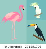 Set Of Exotic Birds. Flamingo ...