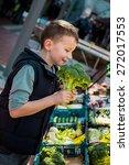 boy holding fresh vegetables...   Shutterstock . vector #272017553