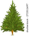 Green Pine Tree For Your Design