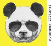 hand drawn portrait of panda... | Shutterstock .eps vector #272416463