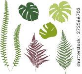 fern and monstera silhouettes.... | Shutterstock .eps vector #272566703