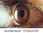 human eye macro | Shutterstock . vector #272614787