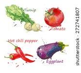 vegetables set hand drawn... | Shutterstock .eps vector #272741807
