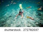 snorkeler diving along the... | Shutterstock . vector #272782037