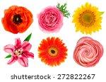single flower heads. lily ... | Shutterstock . vector #272822267