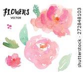 Watercolor Flower Vector....