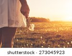 dandelion on woman hand | Shutterstock . vector #273045923