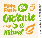 organic  natural  bio and farm... | Shutterstock .eps vector #273048203