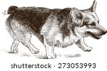 welsh corgi | Shutterstock .eps vector #273053993