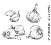 vector hand drawn set of garlic.... | Shutterstock .eps vector #273140987
