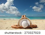 women sunbathing on the beach... | Shutterstock . vector #273327023