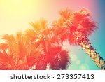 vintage frame with tropic palm... | Shutterstock . vector #273357413