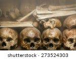 human bones and skulls ... | Shutterstock . vector #273524303