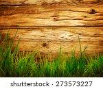 Spring Grass Background. Grass...