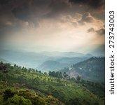 tea plantations in state kerala ... | Shutterstock . vector #273743003