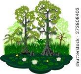 vector florida everglades lake...   Shutterstock .eps vector #273808403