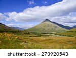 highlands in spring  scotland ... | Shutterstock . vector #273920543
