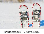 Snowshoes Are Standing Upright...