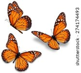 three orange monarch butterfly... | Shutterstock . vector #274174493