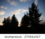 sunset behind trees | Shutterstock . vector #274561427