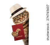 funny cat with passport  | Shutterstock . vector #274765607