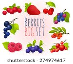 berry  ripe  bright  set | Shutterstock .eps vector #274974617